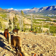 Spectacular Views and Untouched Backcountry Wilderness