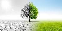 Climate changing landscape.jpg