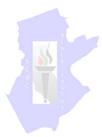 SCDC%20LOGO%20SIDE_clipped_rev_1_NOBackground_edited.png