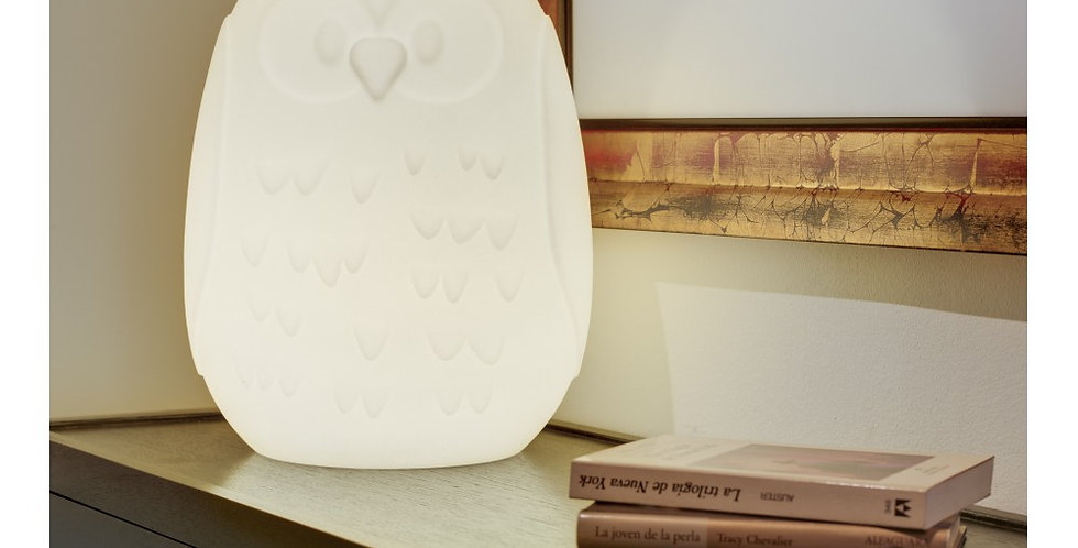 New Garden Gufo Solar and Rechargeable Owl Light (Led)