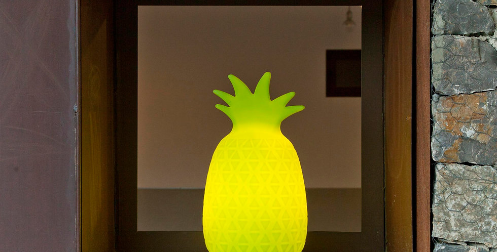 New Garden Samba Pineapple rechargeable Led portable lamp.