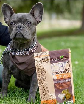 Holistapet CBD treats | WildLifeRx - CBD Store for Pets