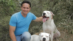 Q and A with Celebrity Dog Behaviorist   David Utter 5-3-21