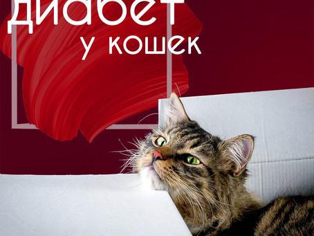 Питание кошек с сахарным диабетом.