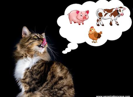 Какой вид мяса лучше всего подходит для питания кошек?