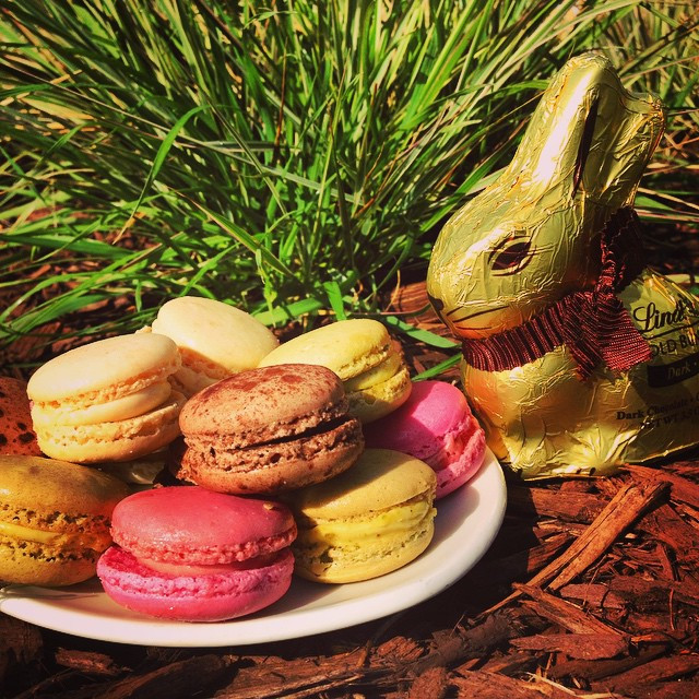 Instagram - Happy Easter! Enjoy our Macarons with your Easter Bunnies, you will
