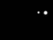Anarkiti Logo 2019 1600 px.png