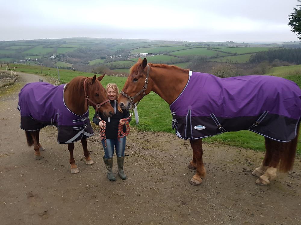Ruth Saberton Horses