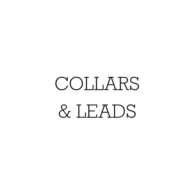 02 - Collars & Leads.png