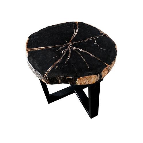 Petrified wood top coffee table