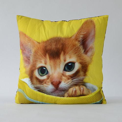 Cat square cushion #4
