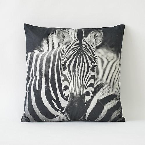 Zebra square cushion