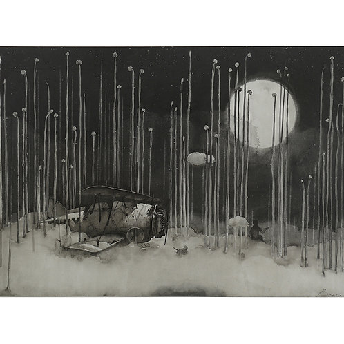 Biplane & full moon - ink painting 1