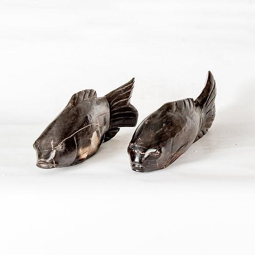 Petrified wood fish 6