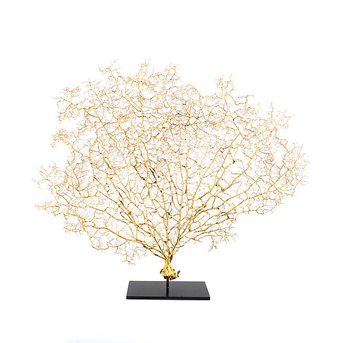 Dry coral branch - medium (Gold)