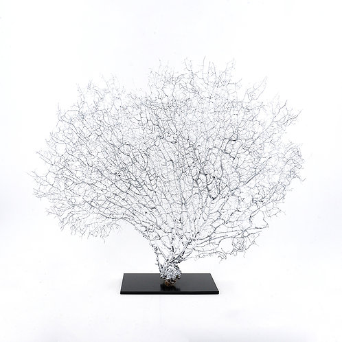Dry coral branch - large (Silver)