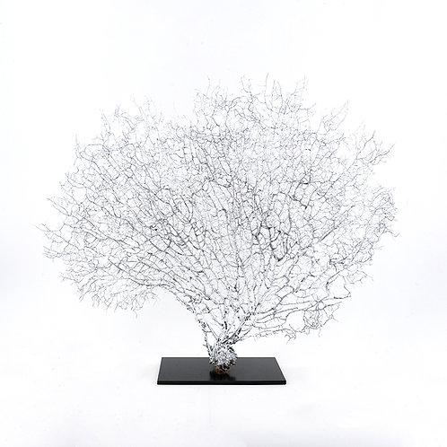 Dry coral branch - medium (Silver)