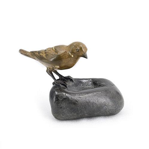 Sparrow on stone