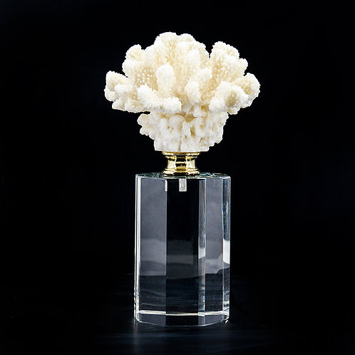 Artificial coral #2, white /w stand