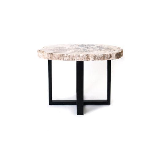 Petrified wood top round coffee table w/ iron base H440