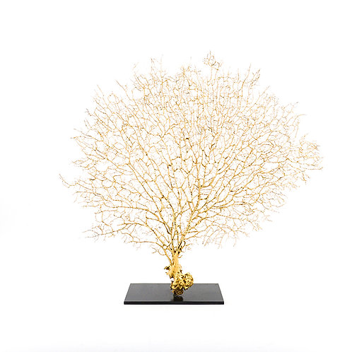 Dry coral branch - large (Gold)