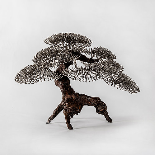 Bronze bonsai (s)