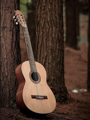 We at Eli Guitars are not afraid to go the extra mile when it comes to creating a customized instrument. Each of our pieces is designed with high precision and attention for the modern-day player. Our 9 years of experience in this field enables us to comprehend the needs of our customers clearly and deliver the supreme product.