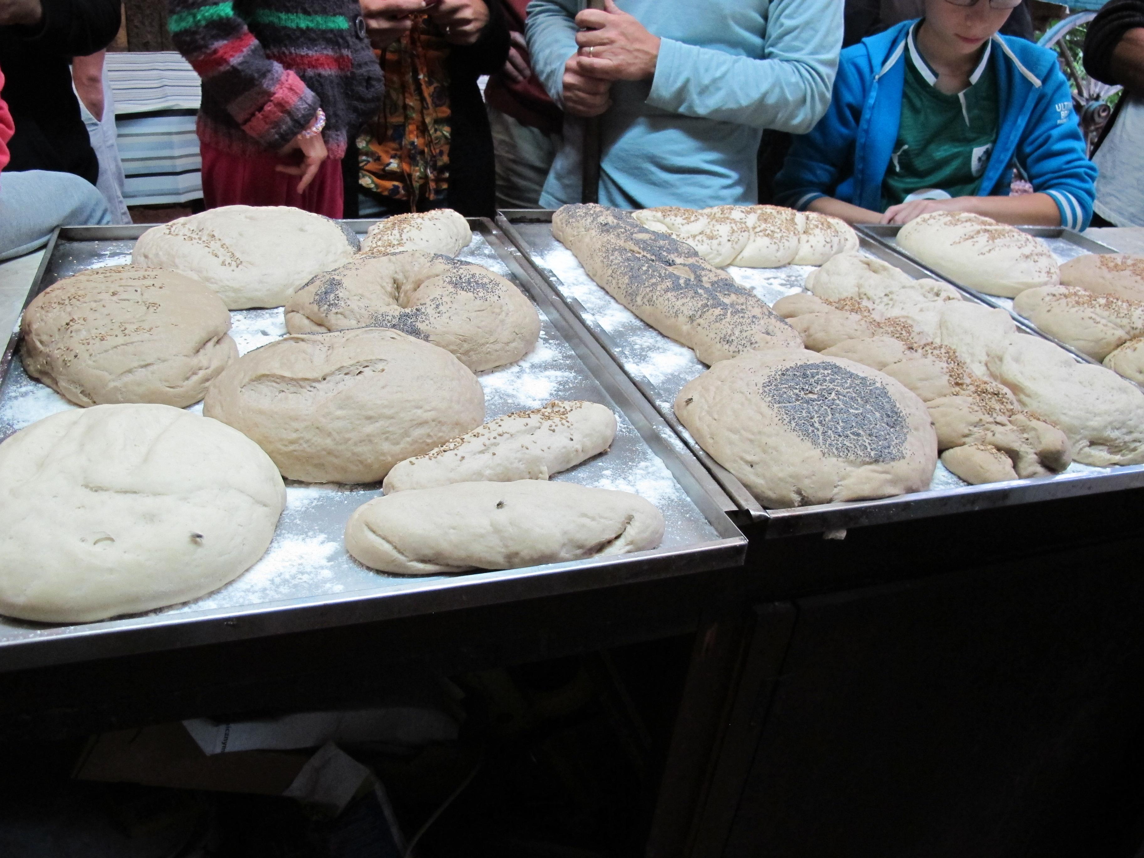 L'ensemble des pains des campeurs