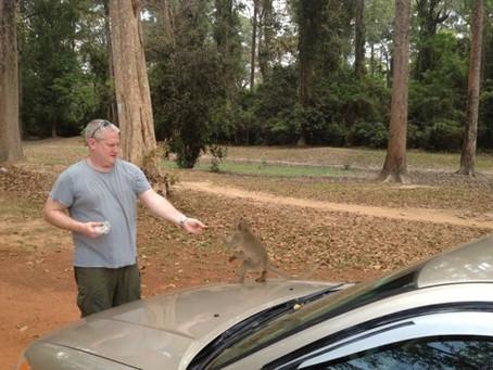 Adam Feeding the Monkeys