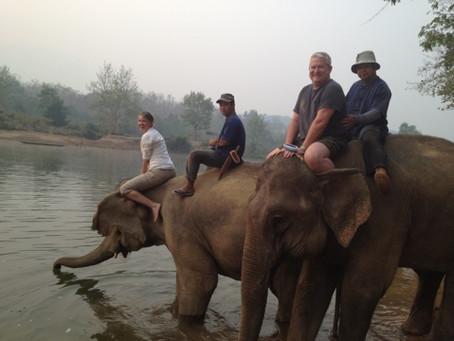 Bathing the Elephants and Golden Buddha Statues