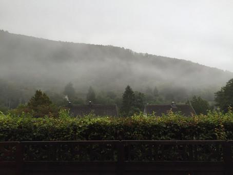 Wiesbaden to Lutz