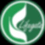 logo_ball.png