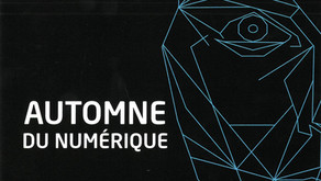Bulle Numérique 2021