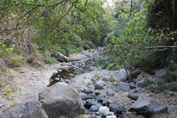 Suchitlán River