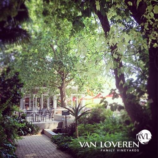 Van Loveren