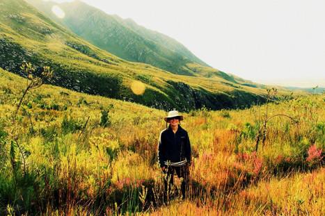 Plaat east - hiking in Marloth