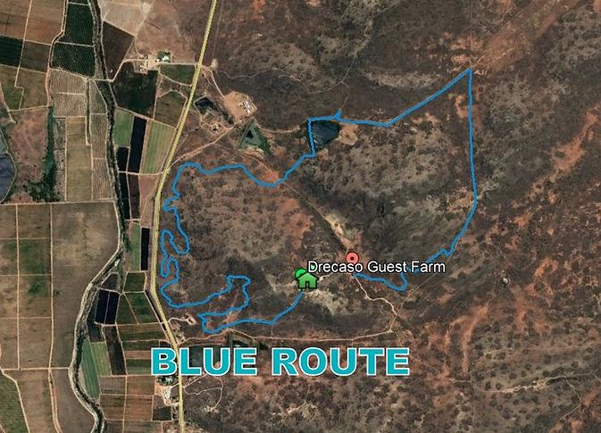 Blue Route.jpg