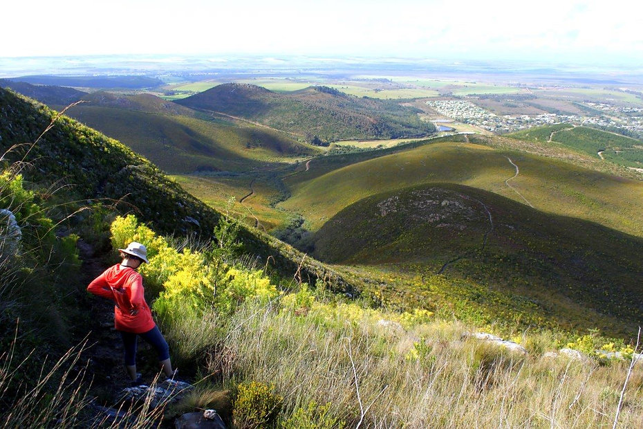 3.5km into Plaat West Hike in Marloht Nature Reserve Swellendam