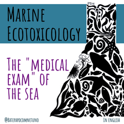 "Marine Ecotoxicology: The ""Medical Exam"" of the Sea"