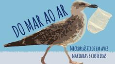 DO MAR AO AR: microplásticos em aves marinhas e costeiras