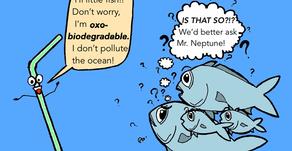 Beware of biodegradable plastics: you may be fooled!