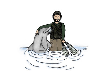 Dolphins and humans: best fishing buddies