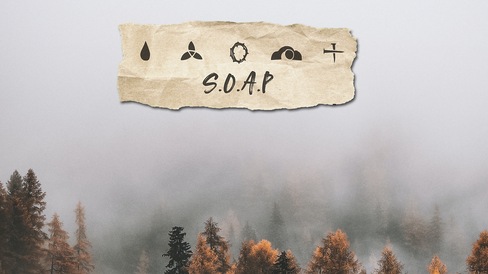 soap4.png