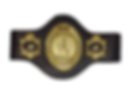 tag team titles .png