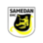 logo_ehc-samedan.png