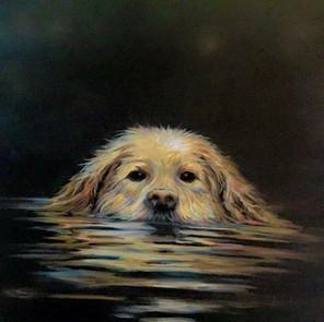 First Swim