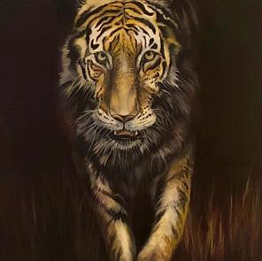 Tiger Tiger, Burning Bright