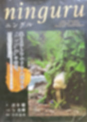 Ninguru By Yuki Atae $20 effiesdolls.com