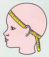 measure_head.jpg
