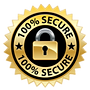 APS-SSL-Secure-Connection_edited.png